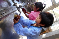 たんぽぽ組は、野菜を洗う担当です。